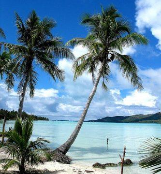 Guia Viajero en Zonas Tropicales